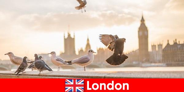 Tempat menarik di London untuk pengunjung internasional