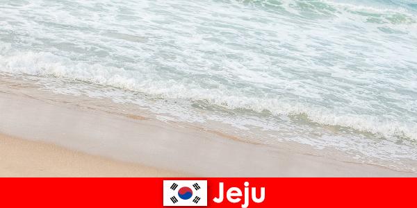 Jeju dengan pasirnya yang halus dan air jernih tempat yang ideal untuk liburan keluarga di pantai