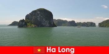 Tur perahu untuk wisatawan ke raksasa batu di Ha Long Vietnam