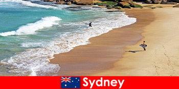 Wisatawan selancar menikmati tendangan pamungkas di Sydney Australia