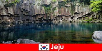 Perjalanan jarak jauh eksotis ke lanskap vulkanik Jeju Korea Selatan yang indah